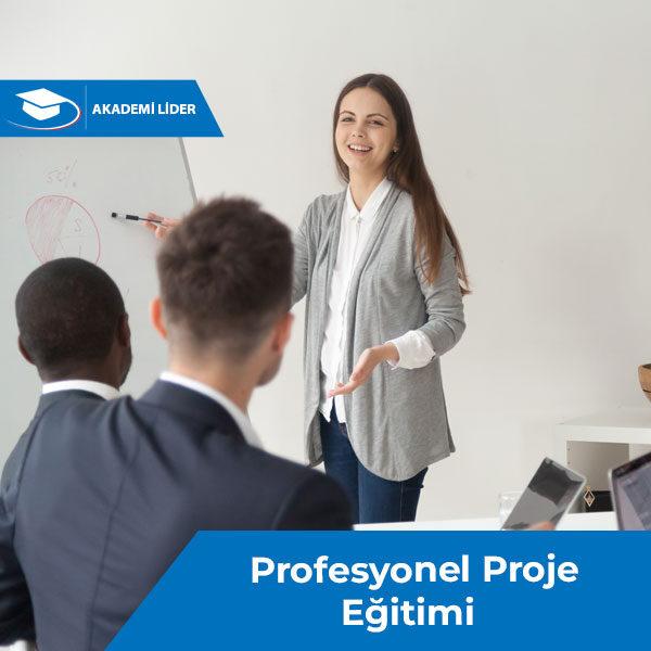 Profesyonel Proje Eğitimi